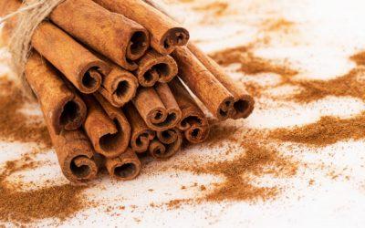 CANELA (Cinnamomum): Quais os seus beneficios para a saúde à luz Medicina Chinesa