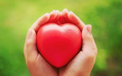 Hipertensão segundo a Medicina Tradicional Chinesa: como é que esta medicina pode ajudar?