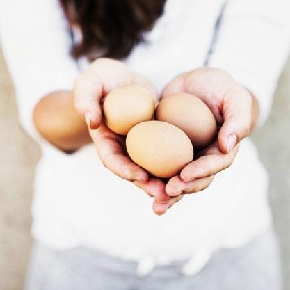 O que tem a Medicina Tradicional Chinesa a dizer sobre o Ovo?